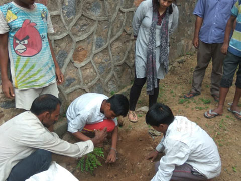 Environment awareness and tree plantation